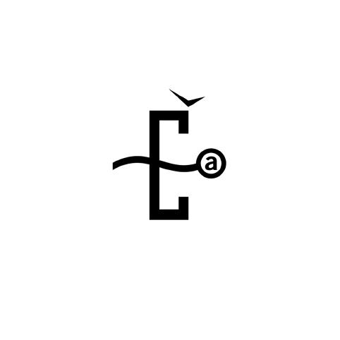 nociones unidas portfolio marcas 15