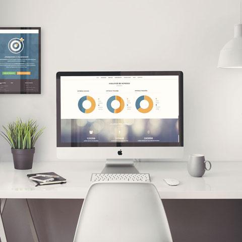 desarrollo web excelencia consultores